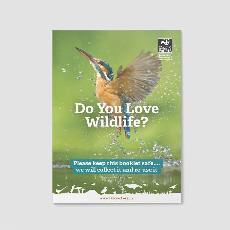 LWT: Marketing Leaflets and Flyers