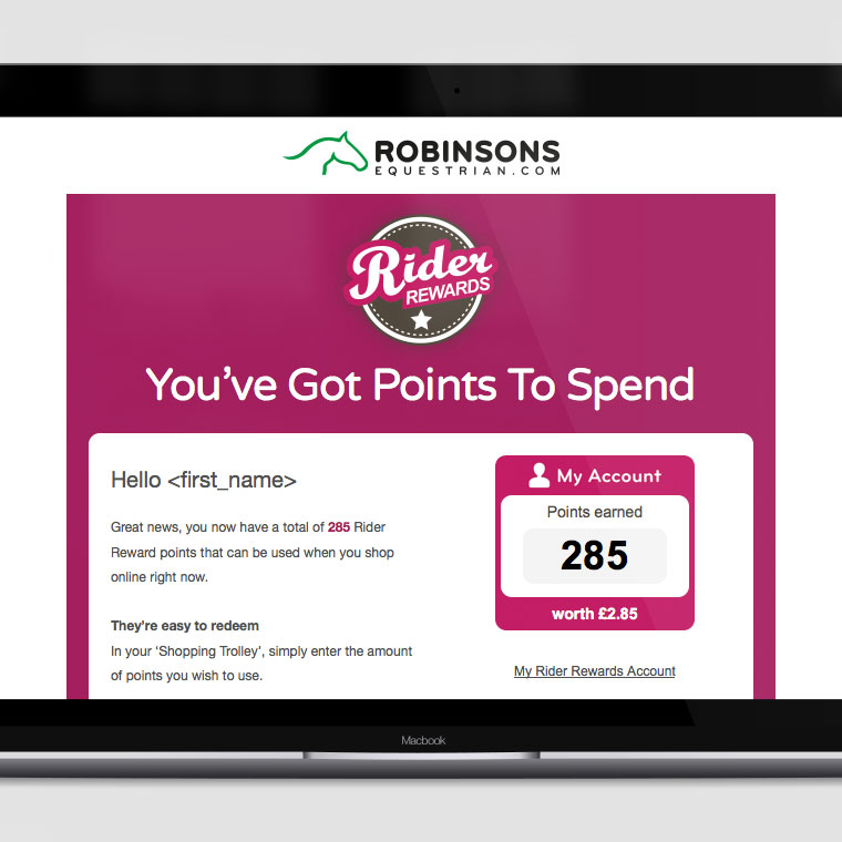 Robinsons Equestrian: Triggered Emails